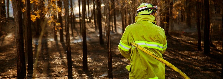 Bushfires and mental health